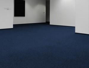 blue (w 352)